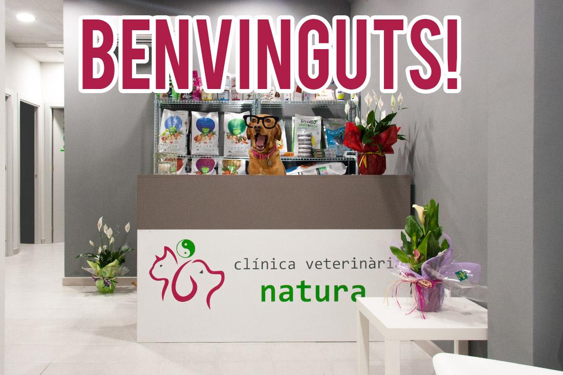 benvinguts-clinica-veterinaria