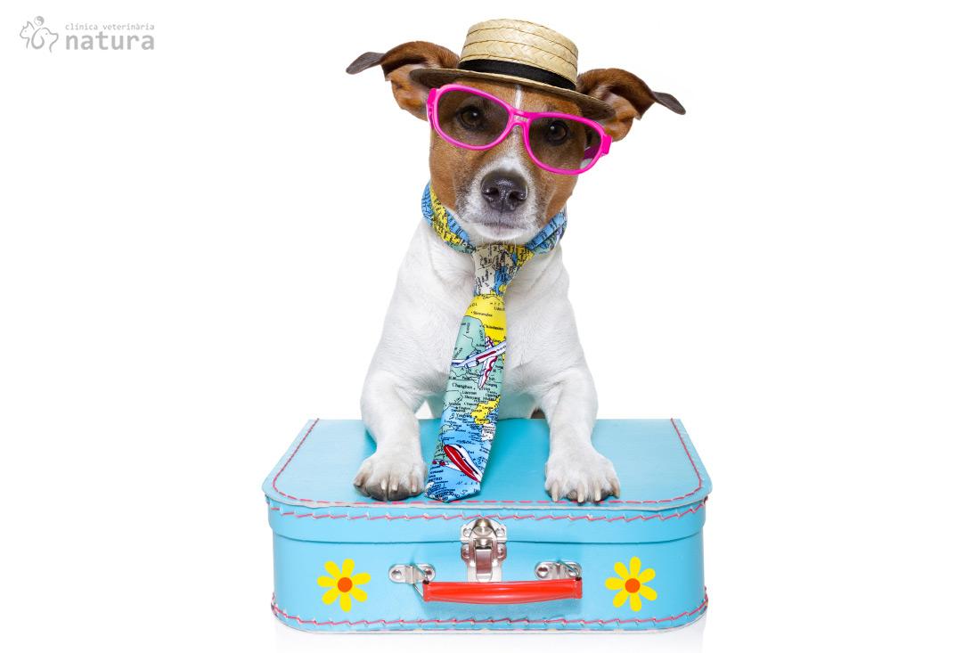 viatjar-estranger-animals